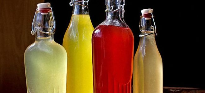 Рецепты браги на изюме: способы приготовления в домашних условиях