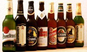 Какое пиво лучше пить — сорта и марки, бутылочное или разливное?