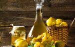 Вино из айвы — лучшие рецепты приготовления и рекомендации