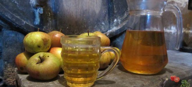 Как приготовить самогон из яблок: простые рецепты для домашнего приготовления