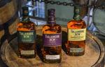 Из чего делают виски — классическая технология производства популярного напитка