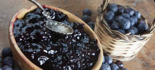 Рецепты вина из голубики, простые способы приготовления в домашних условиях