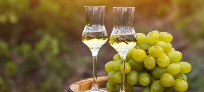 Как приготовить брагу из винограда для самогона в домашних условиях