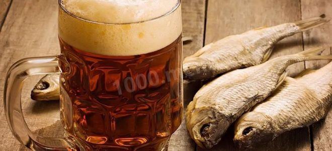 Что лучше пиво или водка: вред и польза для организма