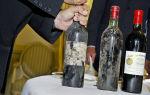 Самое дорогое вино — топ 10 изысканных и элитных марок «напитка богов»