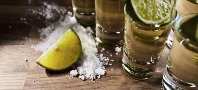 Лучшие рецепты приготовления текилы в домашних условиях