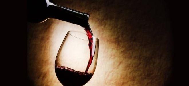 Лучшие домашние рецепты вина из черемухи