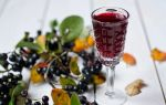 Способ приготовления ликера из черноплодной рябины — вкуснейший рецепт