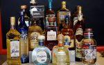 Какая текила лучше — популярные марки, и как правильно пить?