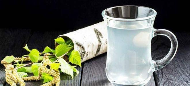 Простые рецепты закваски березового сока в домашних условиях