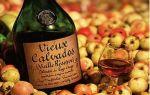 Как правильно пить Кальвадос и чем закусывать?