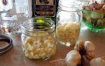 Рецепты настойки чеснока на водке для очистки сосудов