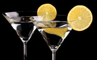 С каким соком пьют мартини — правильное употребление напитка