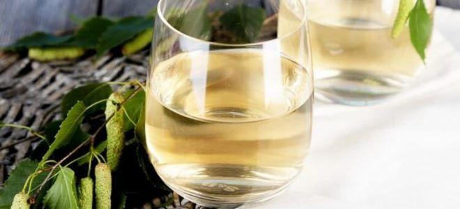 Простой рецепт вина из березового сока в домашних условиях