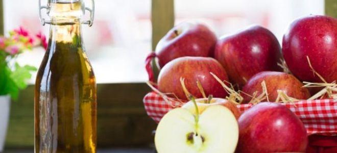 Простой рецепт яблочного уксуса в домашних условиях: несколько способов приготовления