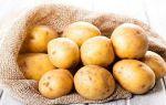 Самогон из картофеля — рецепт браги и перегонка