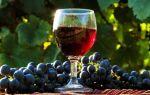 Простые рецепты приготовления домашнего вина из винограда Изабелла