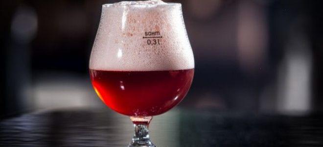 Рецепт приготовления бельгийского вишневого пива в домашних условиях