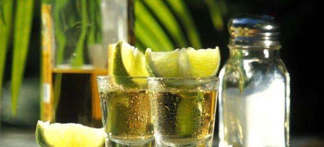 Чем запивать текилу: правила этикета, приправы к напитку