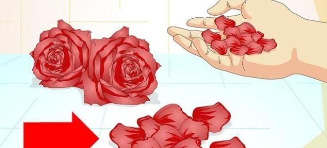 Как сделать розу из лепестков и бумаги своими руками и оригинально украсить вещь?