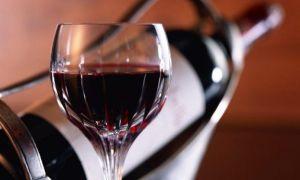 Вино из жимолости: рецепты приготовления напитка, пошаговая инструкция