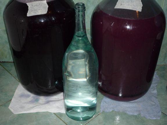 цвет молодого вина