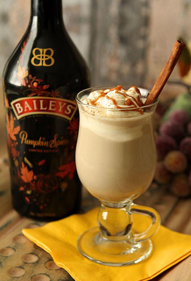 https://alco-pro.com/wp-content/uploads/2018/06/baileys-coffee-pumpkin-spice-3.jpg